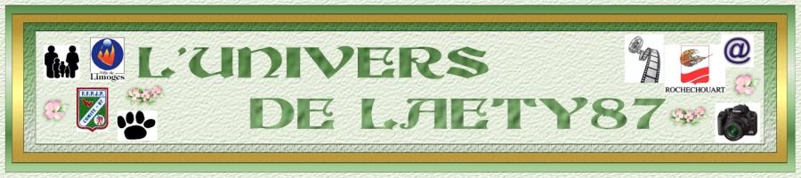 L'univers de Laety87