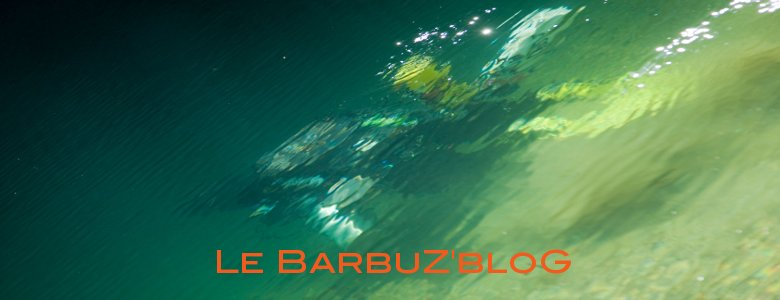 Le blog de Barbuzard