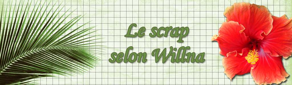 le scrap selon willna