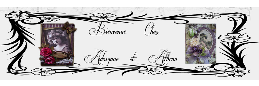 Le blog de scrap-adrigane-athena.over-blog.com