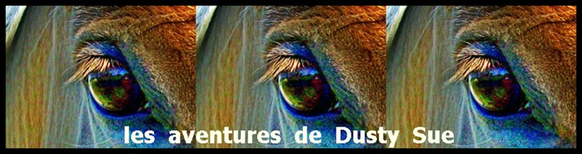 Les aventures de Dusty Sue