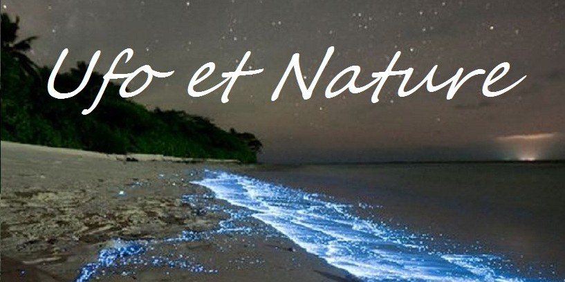 Le blog de ufoetnature