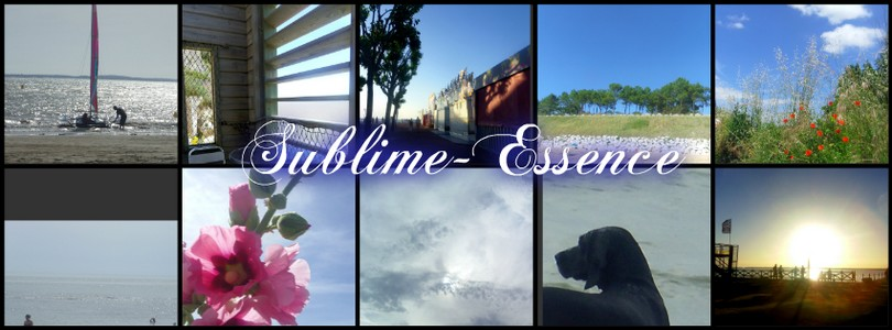 Sublime-essence