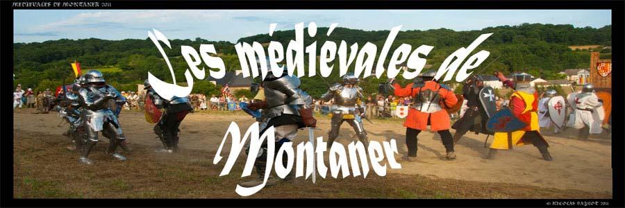 Le blog des Amis du Château de Montaner